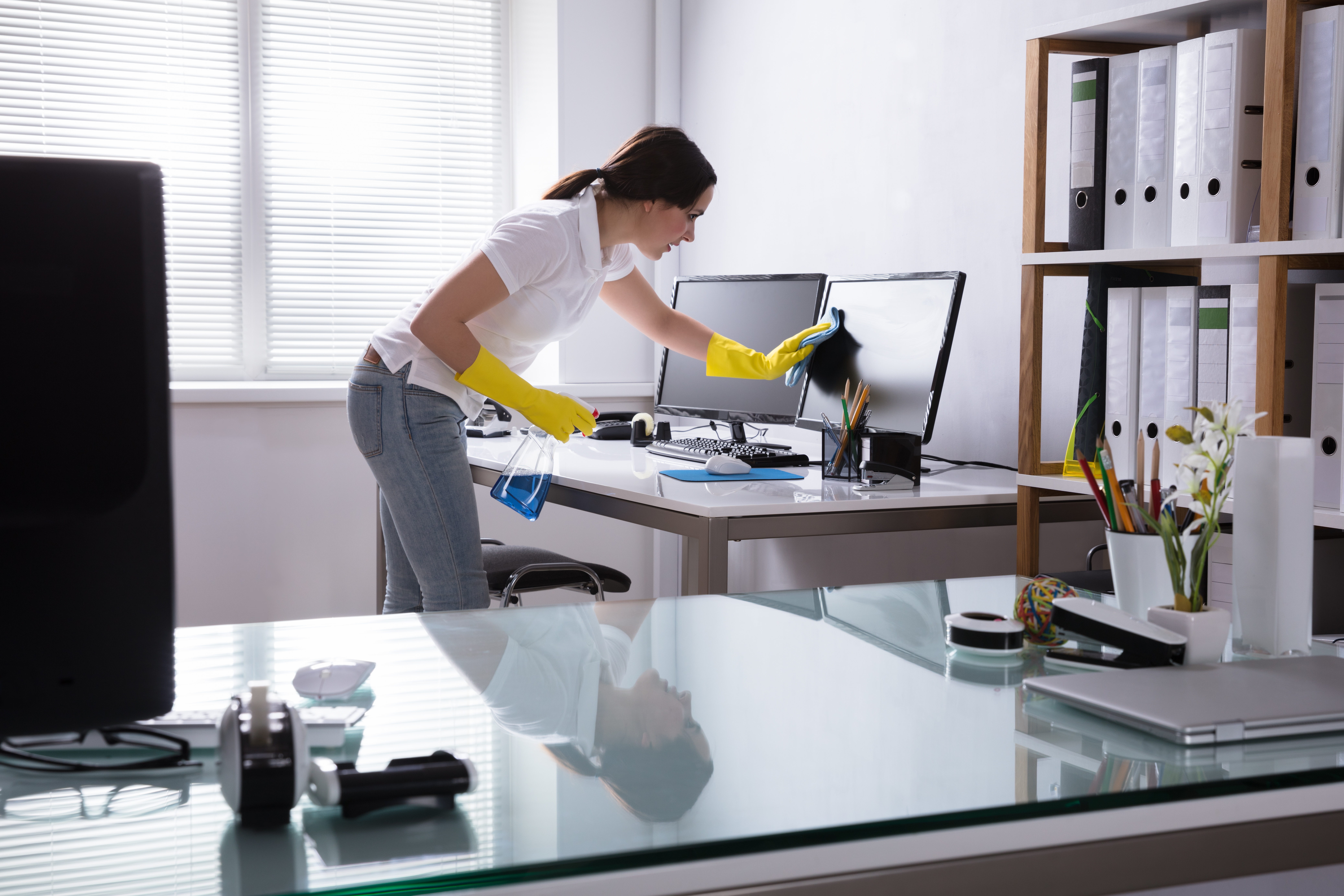 Woman Cleaning Computer